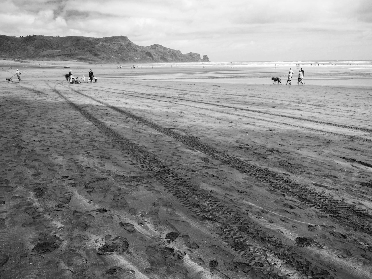 Bethells Beach - Black & White - Landscape Photography Auckland